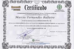 Treinamento Seg. Trabalho 2016 Márcio-page-001