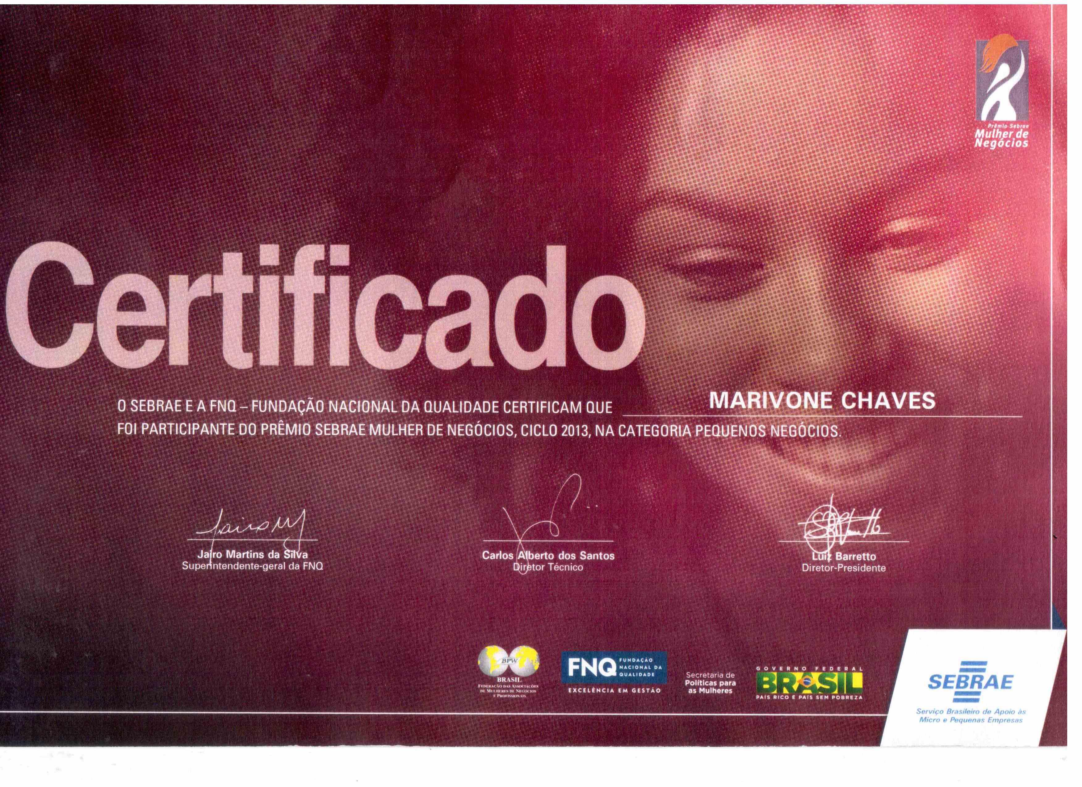 Prêmio Sebrae Mulheres de Negócios, Ciclo 2013, na Categoria Pequenos Negócios