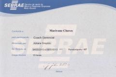 Coach Gerencial
