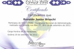 XVII CONAD - Congresso Nacional de Administração